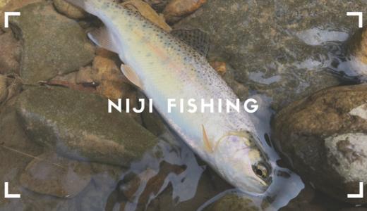 【北海道の渓流釣り】生田原でイワナ・ニジマスを釣ってみた!