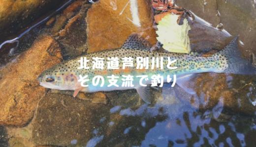 北海道芦別川とその支流サキペンペツ川で釣り!