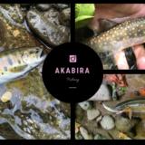 北海道赤平市で釣り(空知川支流のペンケキプシュナイ川)